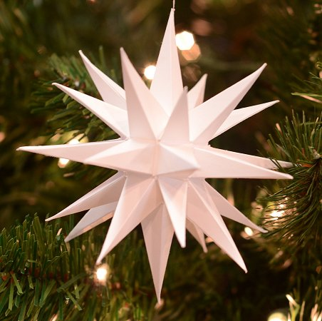 Blog 5 Ornament_secondary